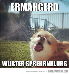 funny-dog-face-water-sprinklers